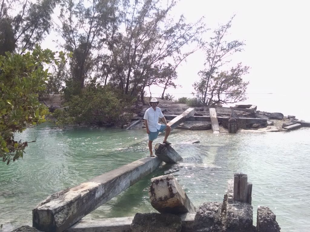 Milling about the Waters of Johnston Key